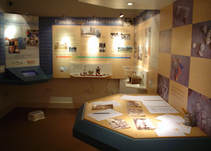 photo of museum interpretation room